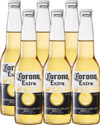 Bière Extra Corona, 6 x 35,5 cl