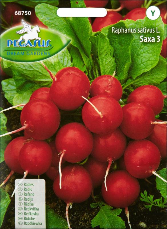 Gemüsesamen Radies Saxa, 1 Packung