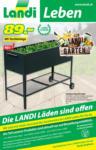 Landi LANDI Gazette KW 08 - au 08.03.2021