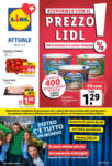 Lidl Lidl Attuale