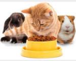 MERKUR -25% auf Tiernahrung - bis 27.02.2021