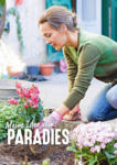 HELLWEG Baumarkt Hellweg: Pflanzen für Haus und Garten - bis 30.06.2021