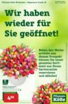 Pflanzen-Kölle Gartencenter Pflanzen-Kölle: Wir haben wieder für Sie geöffnet in Wiesbaden! - bis 03.03.2021