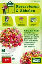 Pflanzen Kölle: Reservieren & Abholen