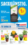 Jumbo Jumbo Angebote - au 14.03.2021