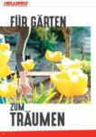 HELLWEG - Linz Hellweg: Richtig gut beraten - bis 10.06.2021