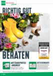 BayWa Bau- & Gartenmärkte BayWa Bau & Garten: Richtig gut beraten - bis 30.06.2021