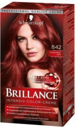 Brillance Intensiv-Color-Creme Nr. 842 Kaschmirrot