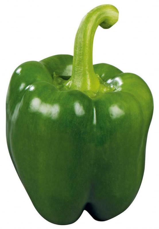 Paprika Grün aus Spanien