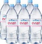 Denner Acqua minerale Evian, non gassata, 6 x 1 litro - al 19.04.2021