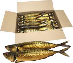 Makrele (Scomber scombrus) mit Kopf, ausgenommen, heißgeräuchert / lose