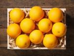 Lidl Orangen