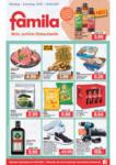 FAMILA Brake GmbH & Co. KG Angebote vom 15.03.-20.03.2021 - bis 20.03.2021