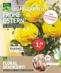 OLDENBURGER WOHNGARTEN GmbH & Co. KG Frohe Ostern! - bis 23.03.2021