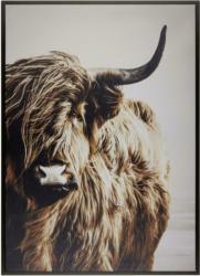 Keilrahmenbild Liam in Bunt, ca. 50x70cm
