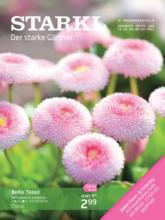 Starkl Flugblatt - gültig bis 8.4.