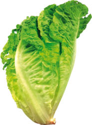 Salat Romana
