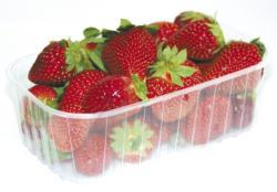 Beere - Erdbeeren Schale