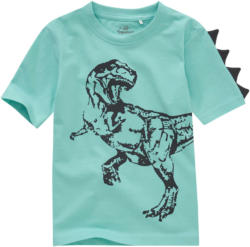 Jungen T-Shirt mit Dinosaurier-Print (Nur online)