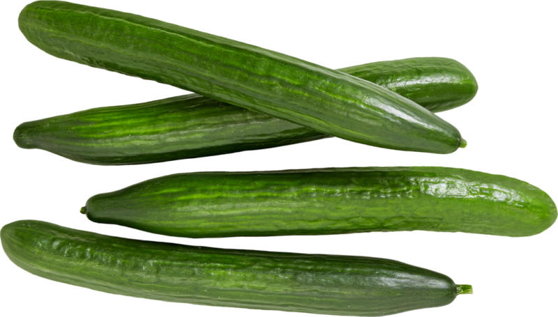 Salatgurke, Spanien, per Stück