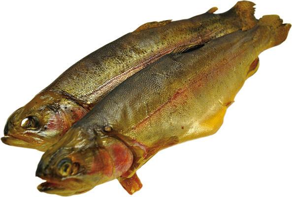 Lachsforelle (Oncorhynchus mykiss) kaltgeräuchert /lose