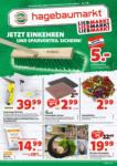 Hagebau Lieb Markt Hagebau Lieb Markt Flugblatt - gültig bis 17.4. - bis 17.04.2021