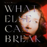 MediaMarkt What Else Can Break (LP+MP3/Inkl.Faltposter)
