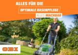 OBI: Alles für die optimale Rasenpflege