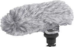 CANON DM 100 - Microphone directionnel