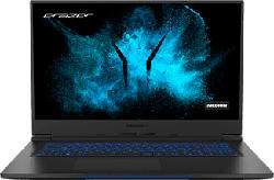 "MEDION ERAZER Beast X10 (MD62048) - Gaming Notebook (17.3 "", 1 TB SSD, Nero)"