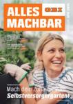 OBI OBI: Mach dein Zuhause zum Selbstversorgergarten! - bis 01.05.2021