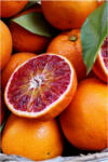 """BayWa Bau- & Gartenmärkte Orangenbaum """"Rosso"""" (Blutorange)"""