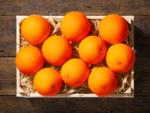 Lidl Oranges bio