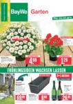 BayWa Bau- & Gartenmärkte Wochenangebote - bis 24.04.2021
