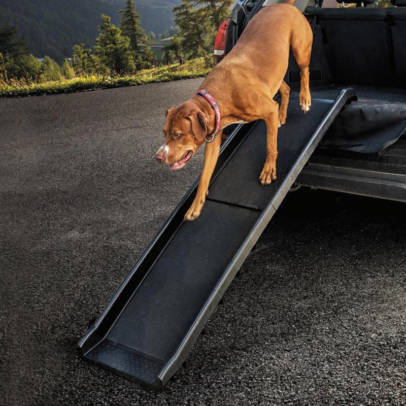 Freezack Rampe pour voiture Travel Dog