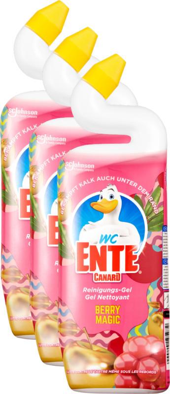 Gel detergente Anitra WC , Berry Magic, 3 x 750 ml