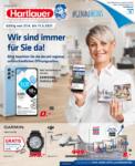 Rohrbach Hartlauer Flugblatt - bis 11.05.2021