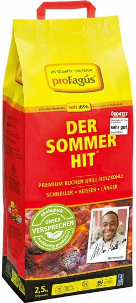Der Sommer Hit Buchen Grill-Holzkohle 2,5 kg