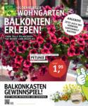 Oldenburger Wohngarten GmbH & Co. KG Balkonien erleben! - bis 04.05.2021