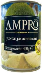 Ampro Junge Jackfrucht