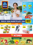 HOFER Flugblatt - bis 15.05.2021