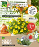 Oldenburger Wohngarten GmbH & Co. KG Ab nach draussen! - bis 20.05.2021