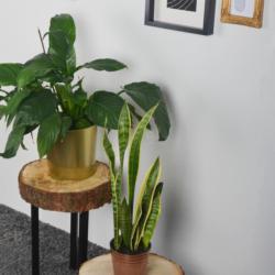 Möbelfüße 4er-Set, Ø30x100 mm, Matt-schwarz