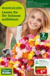 Pflanzen-Kölle Gartencenter Lassen Sie Ihr Zuhause aufblühen - bis 16.06.2021