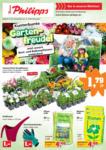Thomas Philipps Thomas Philipps - Gartenfreude! - bis 29.05.2021