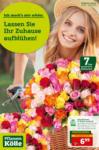 Pflanzen-Kölle Gartencenter Lassen Sie Ihr Zuhause aufblühen - bis 09.06.2021