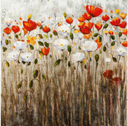 Bild Poppy Flowers