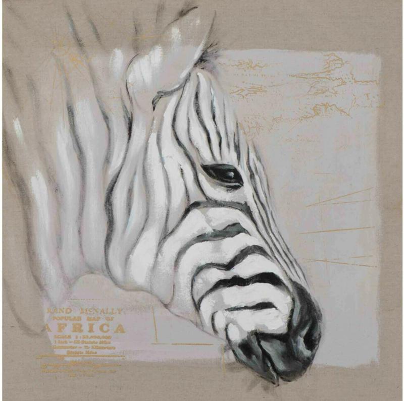 Bild Zebrakopf