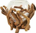 Schubiger Möbel Windlicht Glas mit Schwemmholz H: 20 cm