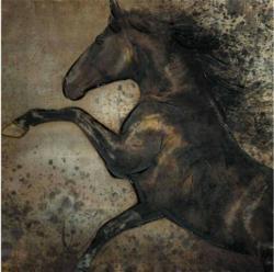 Bild Pferd in Bewegung